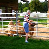 Ausflug 2017 063 spycher kamel b